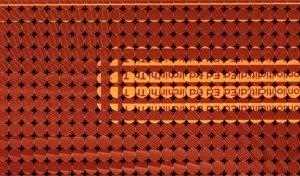 Рис. 4 Пример изображения, получаемого пленоптической камерой