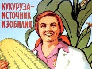 corn-rich