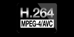 1539-1469-h264_logo2